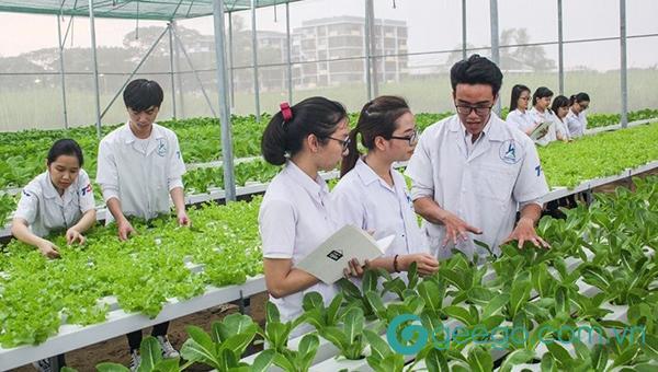 Sinh viên ngành sư phạm kỹ thuật nông nghiệp được trang bị kiến thức đầy đủ