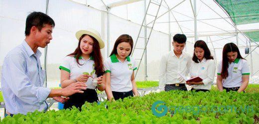 Tìm hiểu về ngành sư phạm kỹ thuật nông nghiệp và cơ hội nghề nghiệp